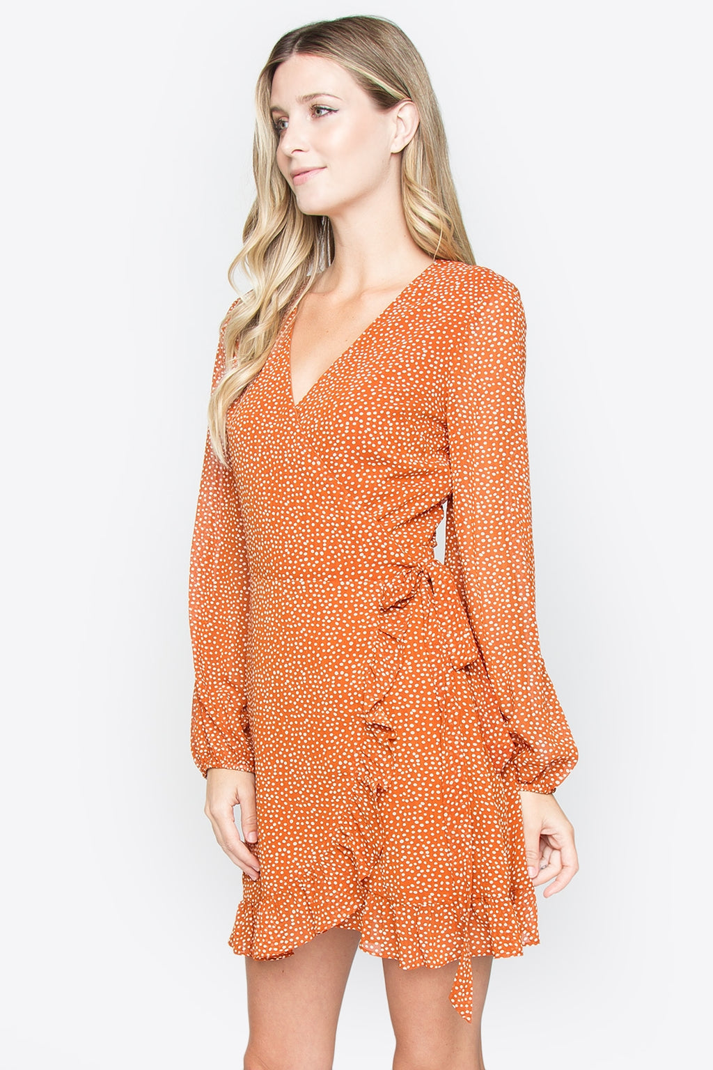 Didi Tie Back Ruffle Dot Print Dress