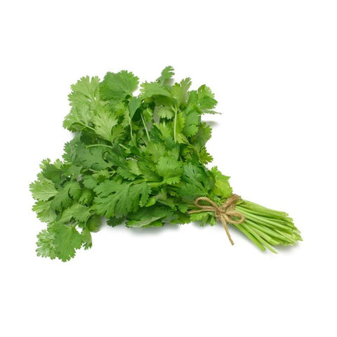 Coriander (bunch)