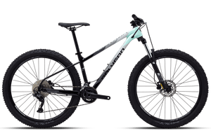 Polygon Xtrada 5 29er (Light Green Grey)