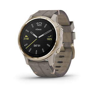 Garmin Fenix 6S Smart Watch (Saphire/Light Gold)
