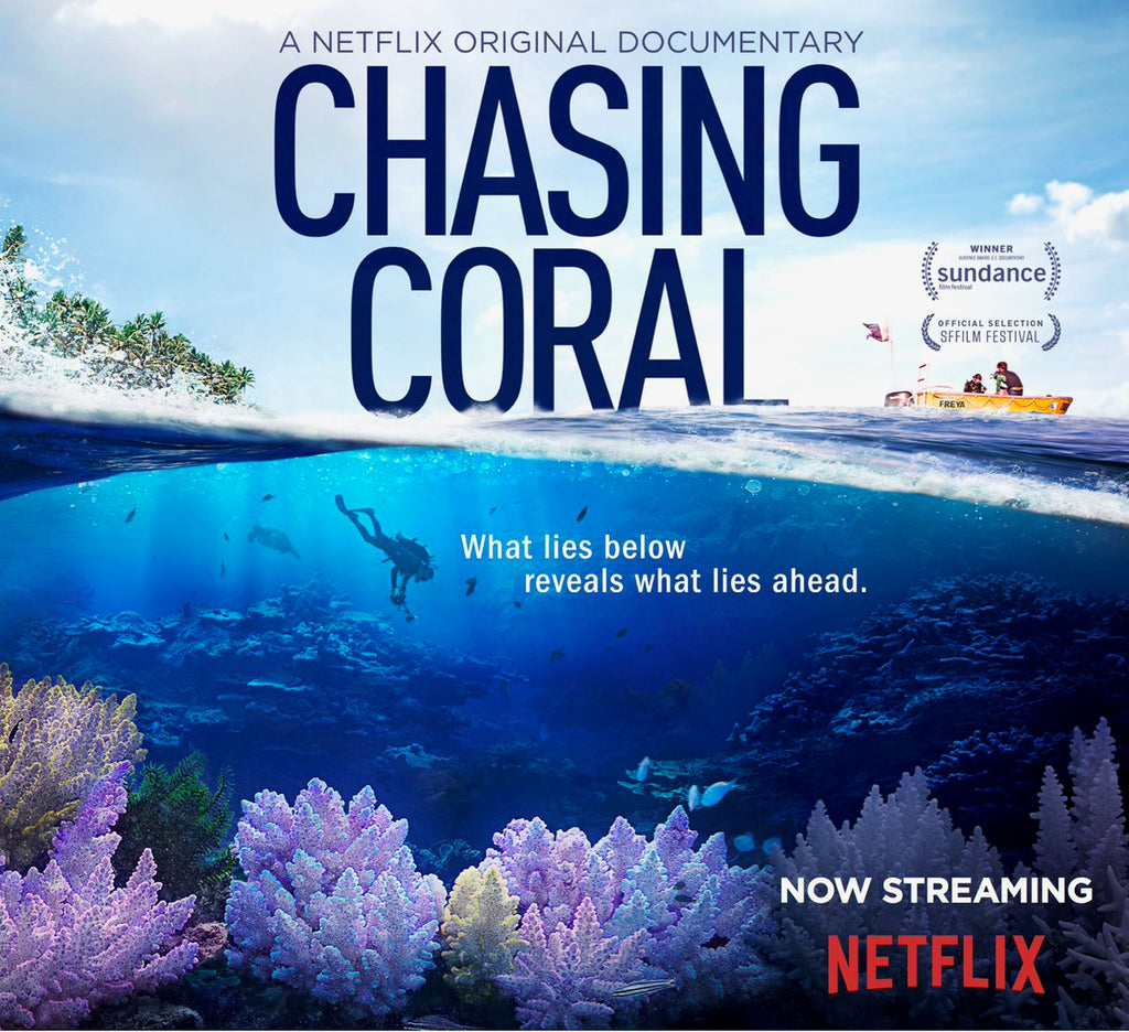 "Screening: ""Chasing Coral"" [Wed, Dec 6th 2017]"