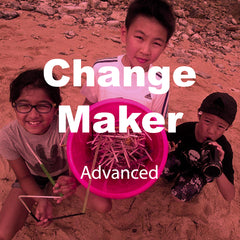 Advanced: ChangeMaker