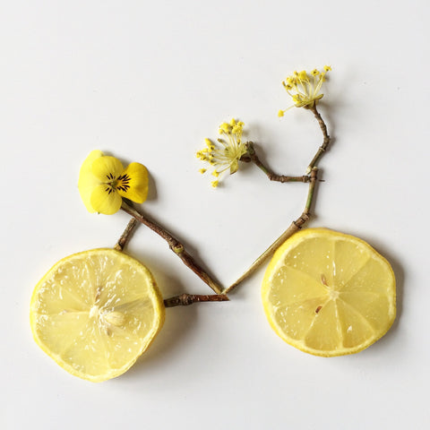 Lemon Bicycle