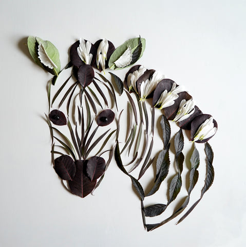 Copy of Zebra