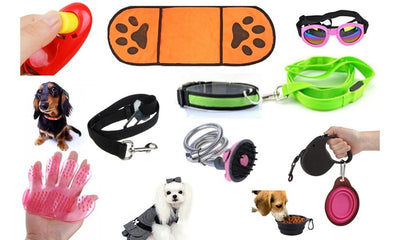 10-in-1 Ultimate Pet Gift Pack For Dog Owners: Accessories, Wearables And More