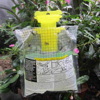 2PC/LOT DISPOSABLE FLY TRAP