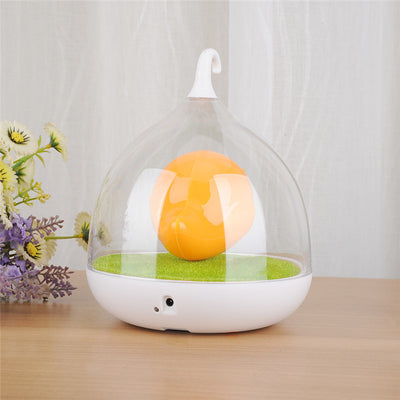 Cute Bird Cage Sensor LED Lamp Soothing Night Light