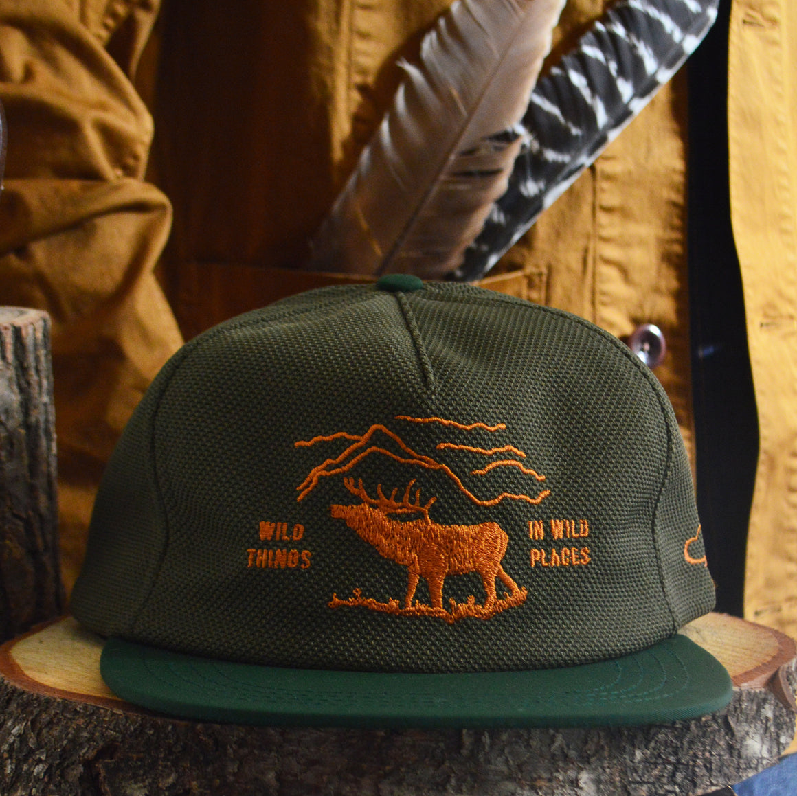 Ball Cap- Wild Things (Green)