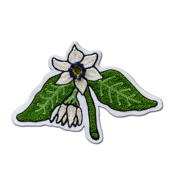 Chain Stitch Patch- Hatch Chile Flower