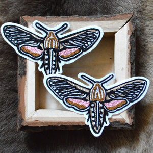 Chain Stitch Patch- White Lined Hawk Moth