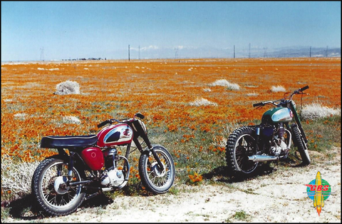 BSA C15 Poppy Flowers