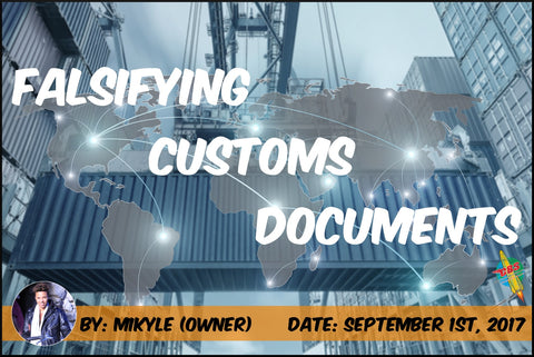 Falsifying Customs Documents Banner