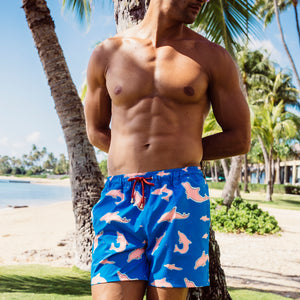 Mazu Resortwear Classic Swim Shorts | Ringo | Pink Dolphin Design