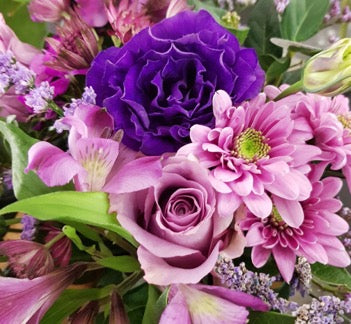 Buy Flowers Online for Cape Town Delivery