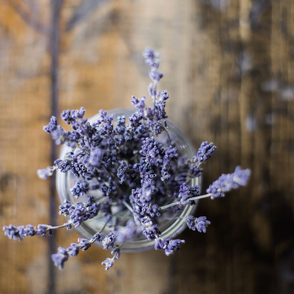 Lavender | Shop Fabulous Flowers Cape Town flower delivery