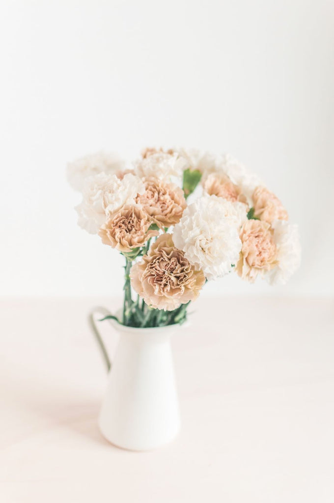 January birthday flowers carnation and snowdrop | Shop Fabulous Flowers