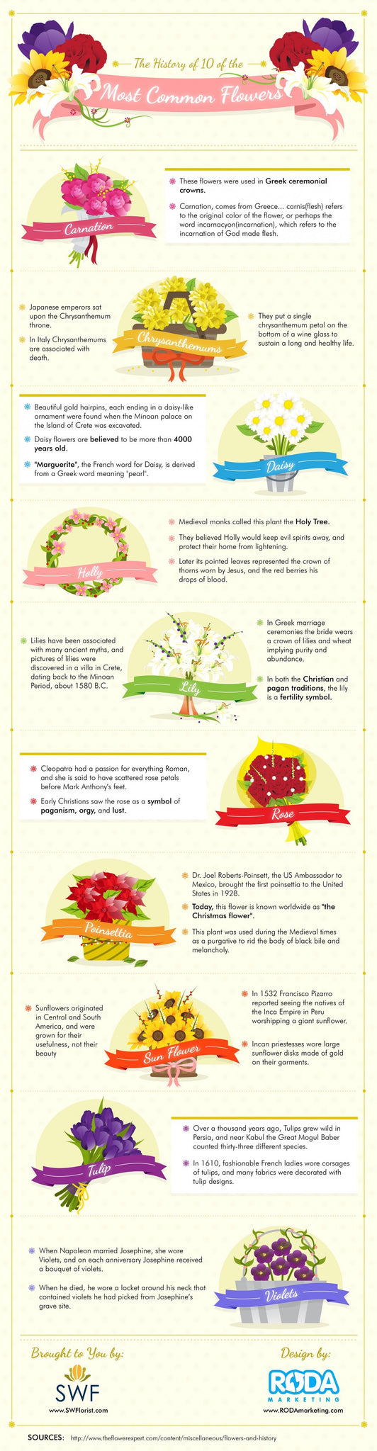 The Fabulous History of Flowers