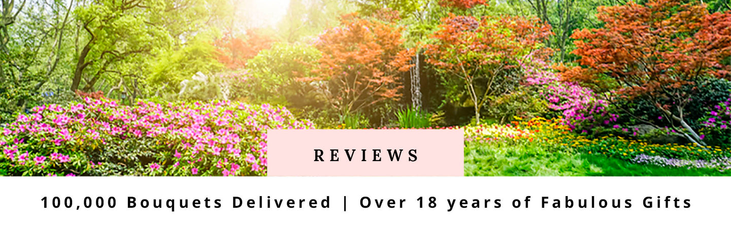 Fabulous Flowers 5 Star Customer Reviews Shop Cape Town Gifts