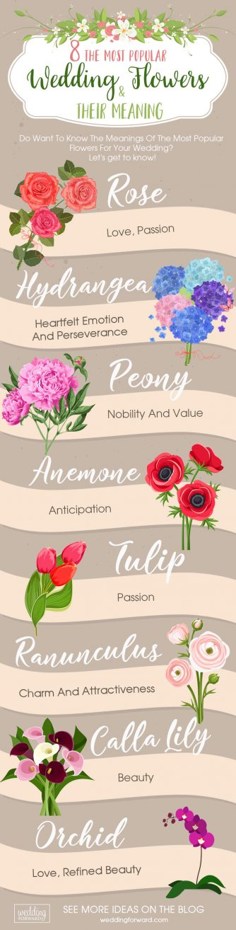 Cape Town Wedding Florist | Shop Fabulous Flowers | Infographic Cape Town Bridal Bouquets