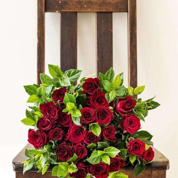 Red Rose Bunch (12 or 24 Red Roses) - Fabulous Flowers Cape Town Flower Delivery
