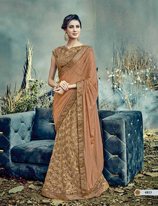 Brown Net Saree With Brown Blouse