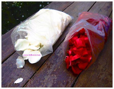 Fresh Rose Petals- ROS2233val