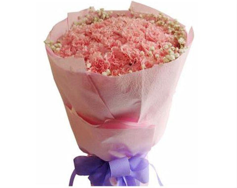 Carnation Bouquet  - FBQ1079