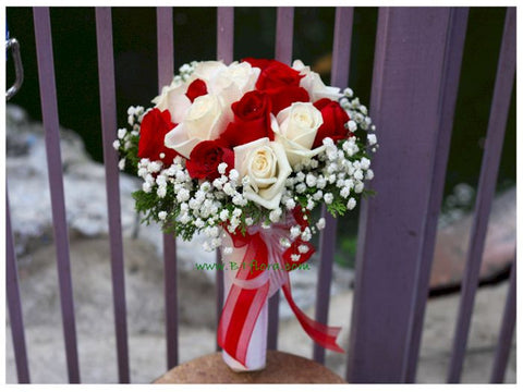Red n White - WED0102