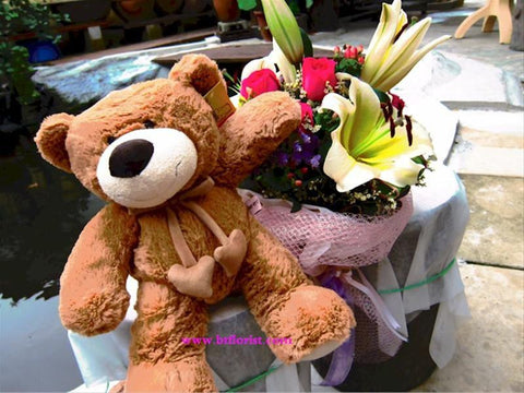 "15"" Heart String Bear (brown colour)     - BEB582B"
