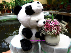 Premium Panda Stuffed Bear    - DIN002