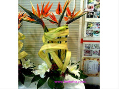 Bird of Paradise Arrangement  - TBF4007