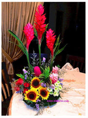 Alpinia Arrangement  - TBF4033
