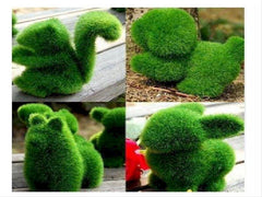 Artificial Grass Animals    - ali009