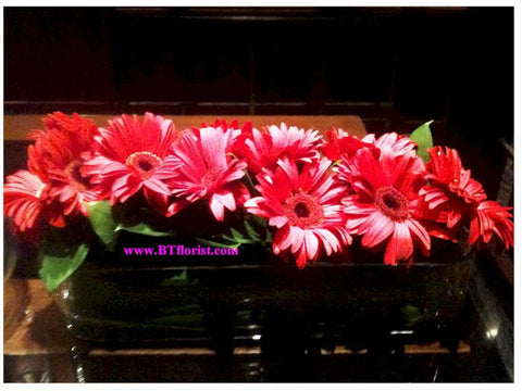 Gerbera Long Arrangement - WED0535