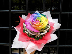 Single Rainbow Rose Bouquet -  FBQ1308