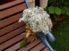 Baby Breath Bridal Bouquet - WED0212