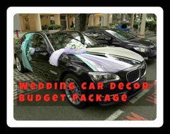 Wedding Car Decoration Budget Package - PAC8081