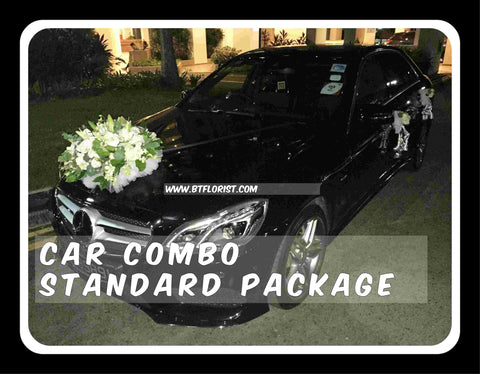 Car Decoration Combo Standard Package - PAC8063