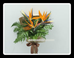 Simple Bird of Paradise Bouquet  - FBQ1371