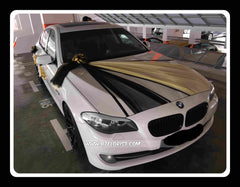 L wedding car decorations btflorist from 8500 very simple theme car decoration wed0756 junglespirit Gallery