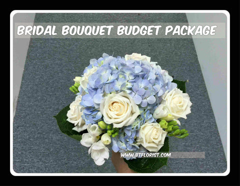 Bridal Bouquet Budget Package - PAC8091
