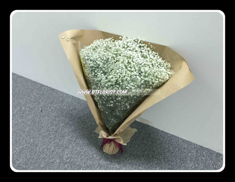 Giant Baby Breath Bouquet      - FBQ2233