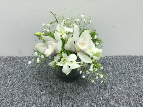 Cymbidium Arrangement - TBF4128