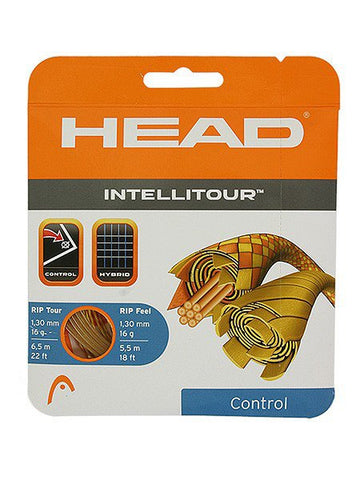 Strings - Head Intellitour 16 String Natural