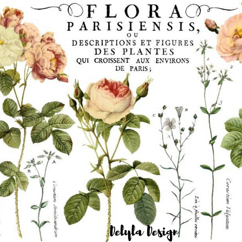 IOD Decor Transfer: Flora Parisiensis {Fall Release}