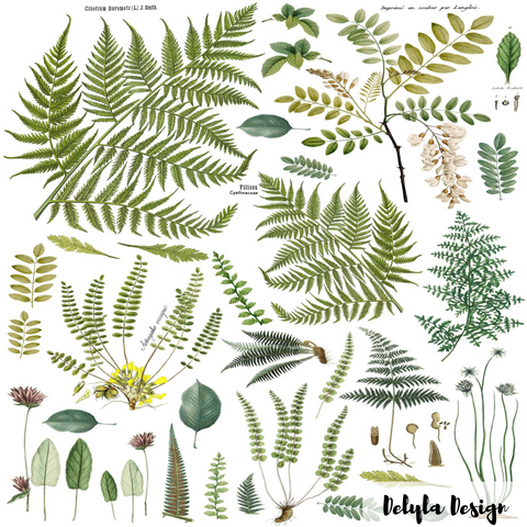 IOD Decor Transfer: Fronds Botanical
