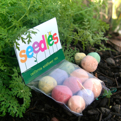 Seed Bombs and Wildflower Seed Balls