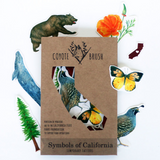 Symbols of CA Temporary Tattoo Set