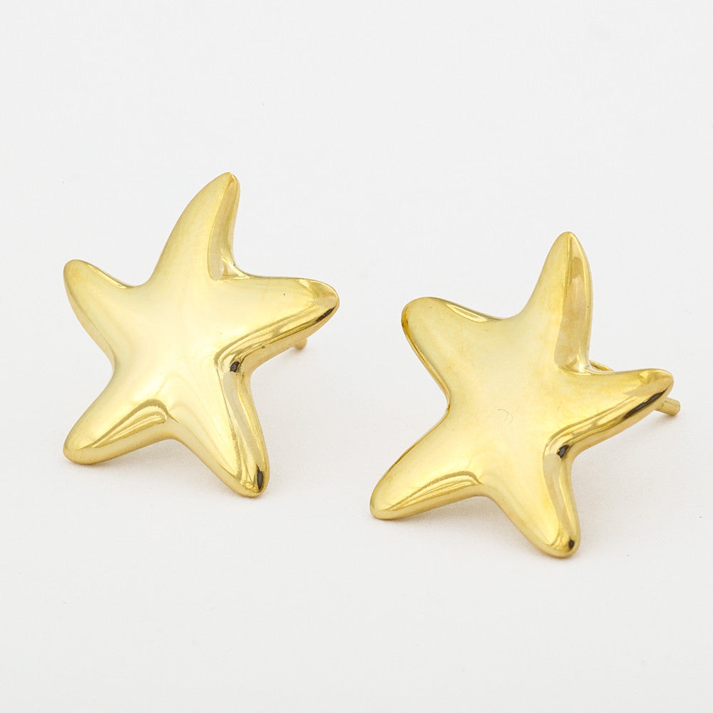 "Roberto by RFM ""Stelline"" Sterling Silver Earrings"