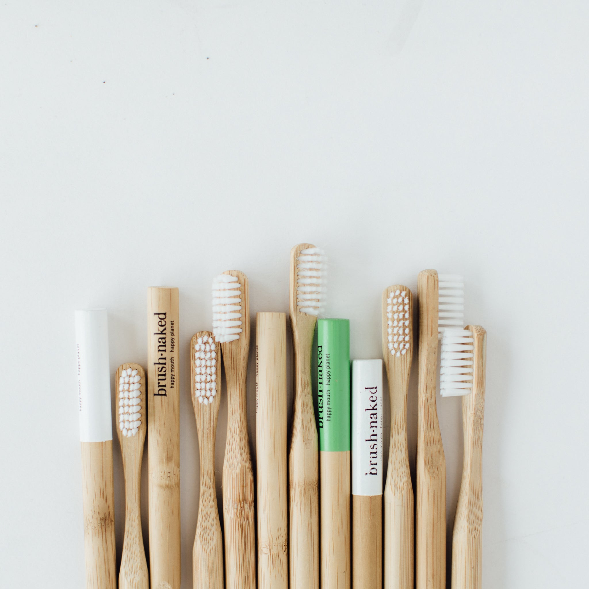 Toothbrush with Biodegradable Plant-Based Bristles (Adult)- 12-Pack